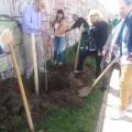 """""""Da svaki Rotarijanac zasadi drvo"""""""