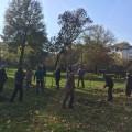 """Akcija sadnje 20 stabla u Čairu – """"Za lepši Niš"""""""